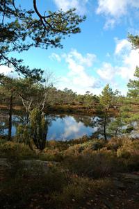 nature Norway 1
