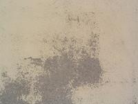 texture0 7
