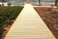 A wooden road