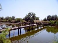 Danube delta 12