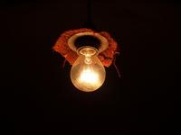 bulb light 1