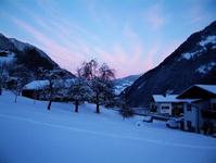 Austrian Dawn