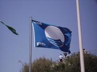 European Blue Flag