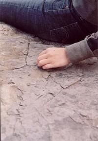 Soft hands, dry ground