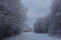 winter landscape idyll