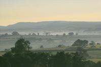 Misty Cheviot Morning