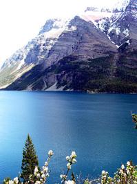 Glacier National Park Series 2