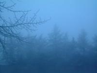 Winter Mist 3