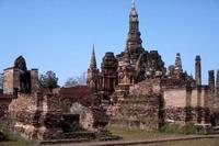 Temple Plant Thailand 2