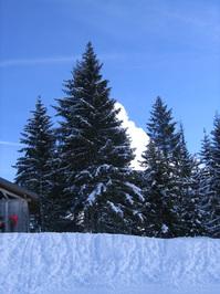 Morzine - Skiing 2