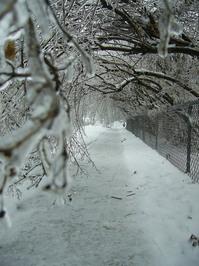 ice storms 2