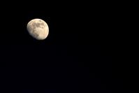 moon_0 2