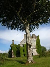 Menlo Castle 1