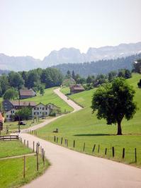 Swiss Landscape 4