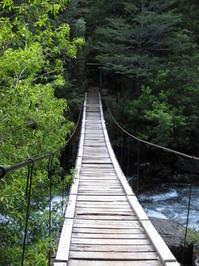 old wooden bridge 1