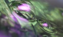 Water Bubble
