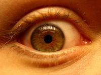 green brown eye