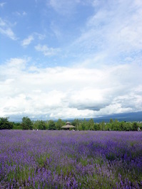 Hokkaido 3