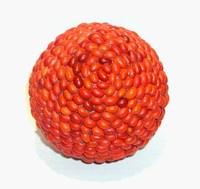 ornamental bean sphere 1