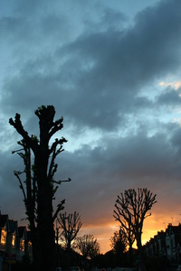 London autumn sunset