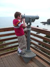 Boy Views the Sea