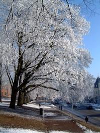 Winter in Kalmar, Sweden 2
