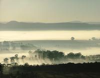 Mist Flow 2
