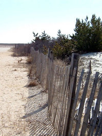 Seaside Fence