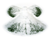 Susan's Snow Angel