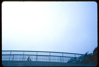 Footbridge Over Highway One