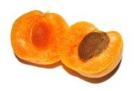 Apricot Halved