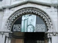 g.pino