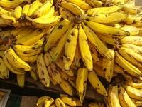 Banana Prata 1