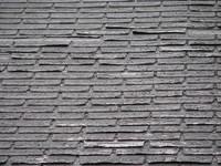 roof shingles 1