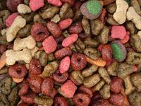 Dry Dog Food 3
