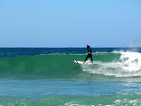 SurfsUp_Too