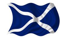 St Andrew's Cross Flag