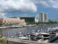 Downtown Tampa Florida 10
