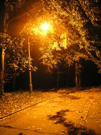 Nightwalk 2