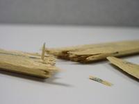 Broken Ruler 1