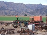 desert farms 4