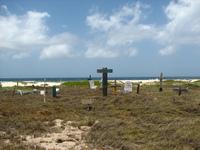 Pet Cemetery