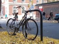 fall bicycle