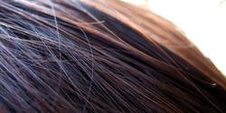 Hair Series 3