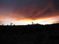 Desert Skyline Sunrise