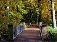 Autumn park'n bridge