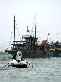 Cruise,Halong,Bay,Bay,Boats,Vietnam,Day,Boat,Activities,Work