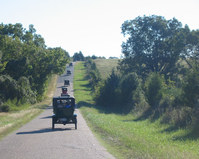 Model T Fords