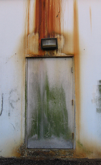 Moldy Door
