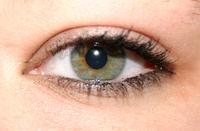 eyes 6